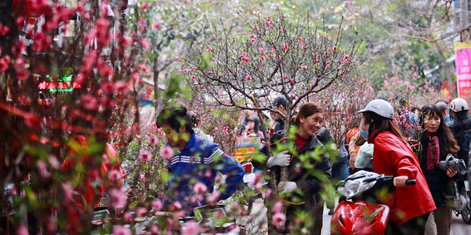 Hanoi flower market for Tet