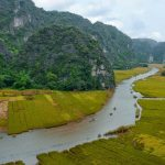 tam coc rice fields